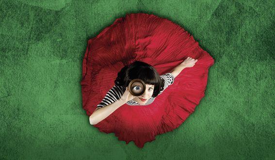 Die fabelhafte Welt der Amélie Logo quer