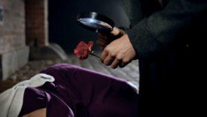 Sherlock Lupe Rose