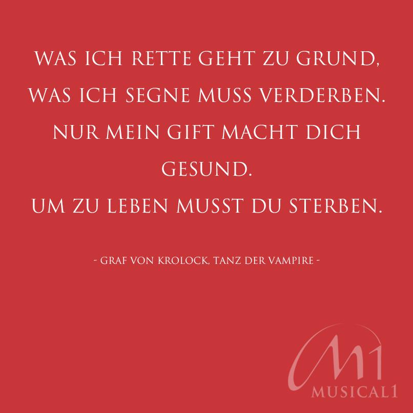 Image Result For Kurze Zitate Leben Liebe