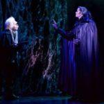 Tanz der Vampire beim Grafen